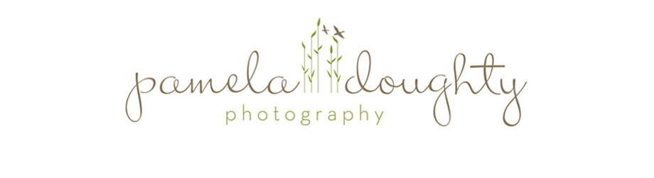 Pamela Doughty Photography